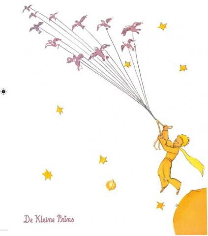 Het boek De Kleine Prins biedt columnist Hazem troost en inspiratie