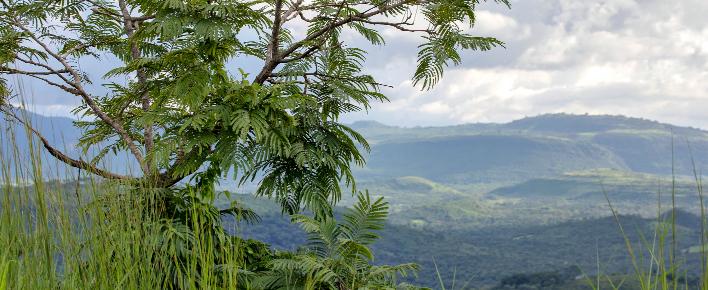 Terugkeer naar land van herkomst Congo